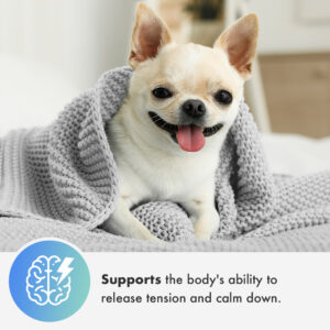 Cannanine™ Bacon Flavored CBD Soft Chews For Dogs 300 mg. 60 ct.