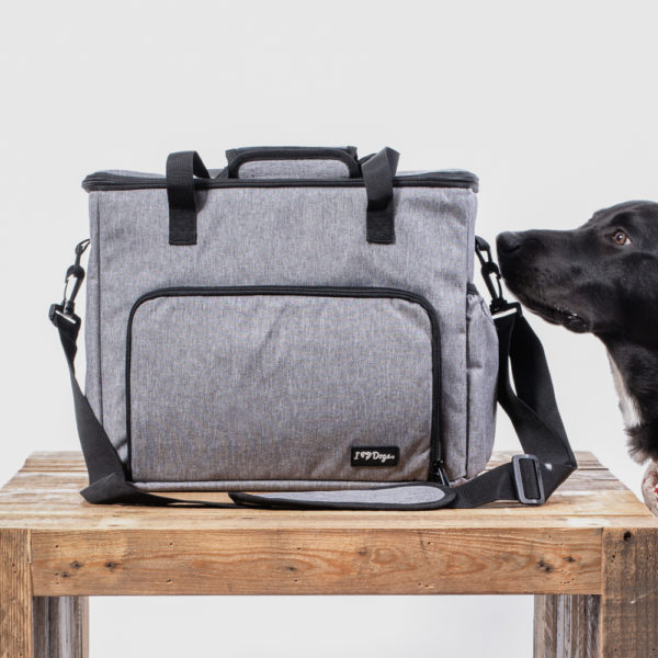Bring Your Dog 5 Piece Pet Travel Bag