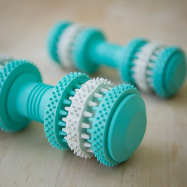 Fresh Mint Scented Brushing Bone by Project Play®