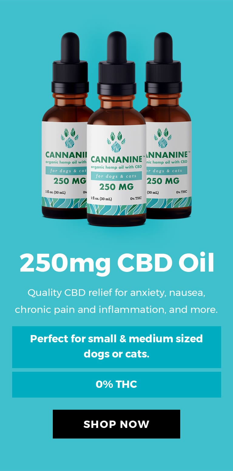 250mg CBD Oil - Quality CBD relief for anxiety, nausea, chronic pain and inflammation and more.