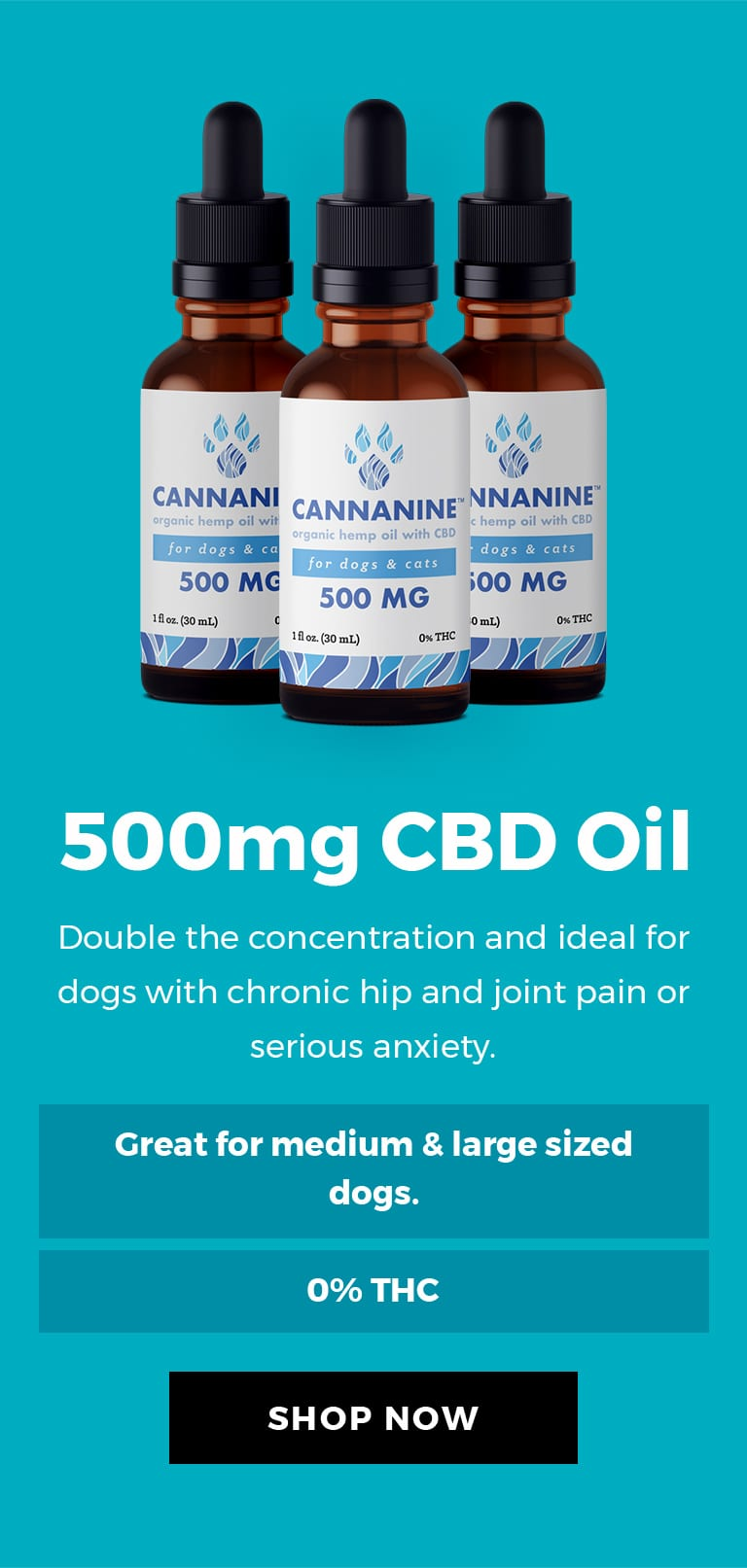 500mg CBD Oil - Double the concentration and ideal for dogs with chronic hip and joint pain or serious anxiety.
