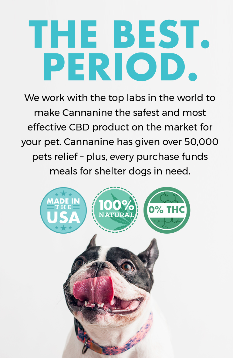 The Best. Period. We work with the top labs in the world to make Cannanine the safest and most effective CBD product on the market for your pet.
