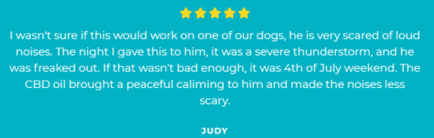 Product testimonial from Judy
