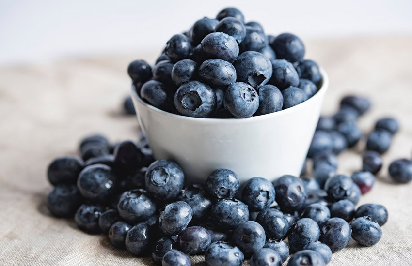 it's okay if your dog eats some blueberries; they're not toxic to dogs and contain fiber