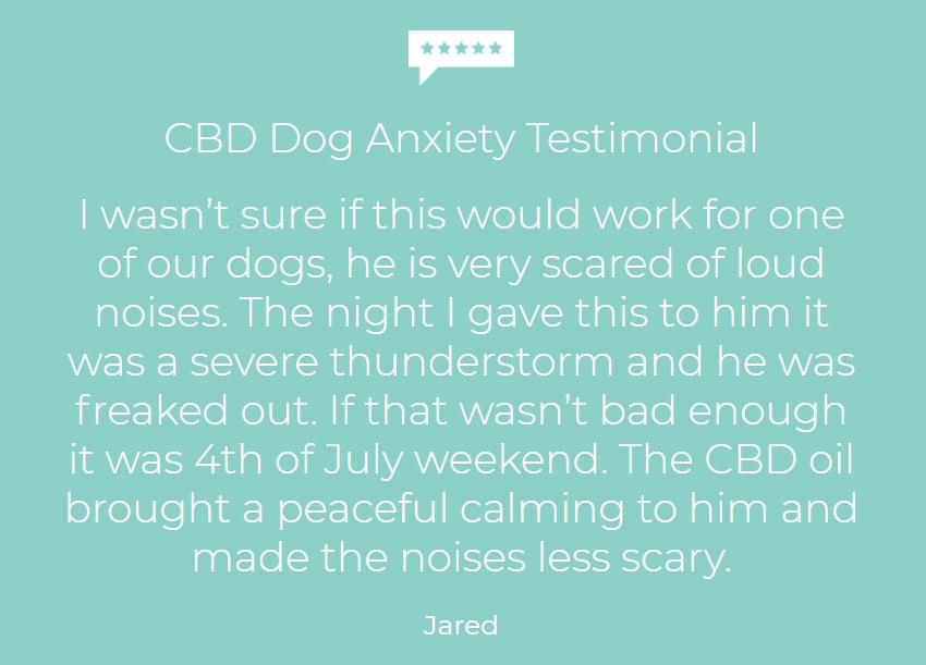 Customer testimonial using hemp oil dogs scared of thunderstorms